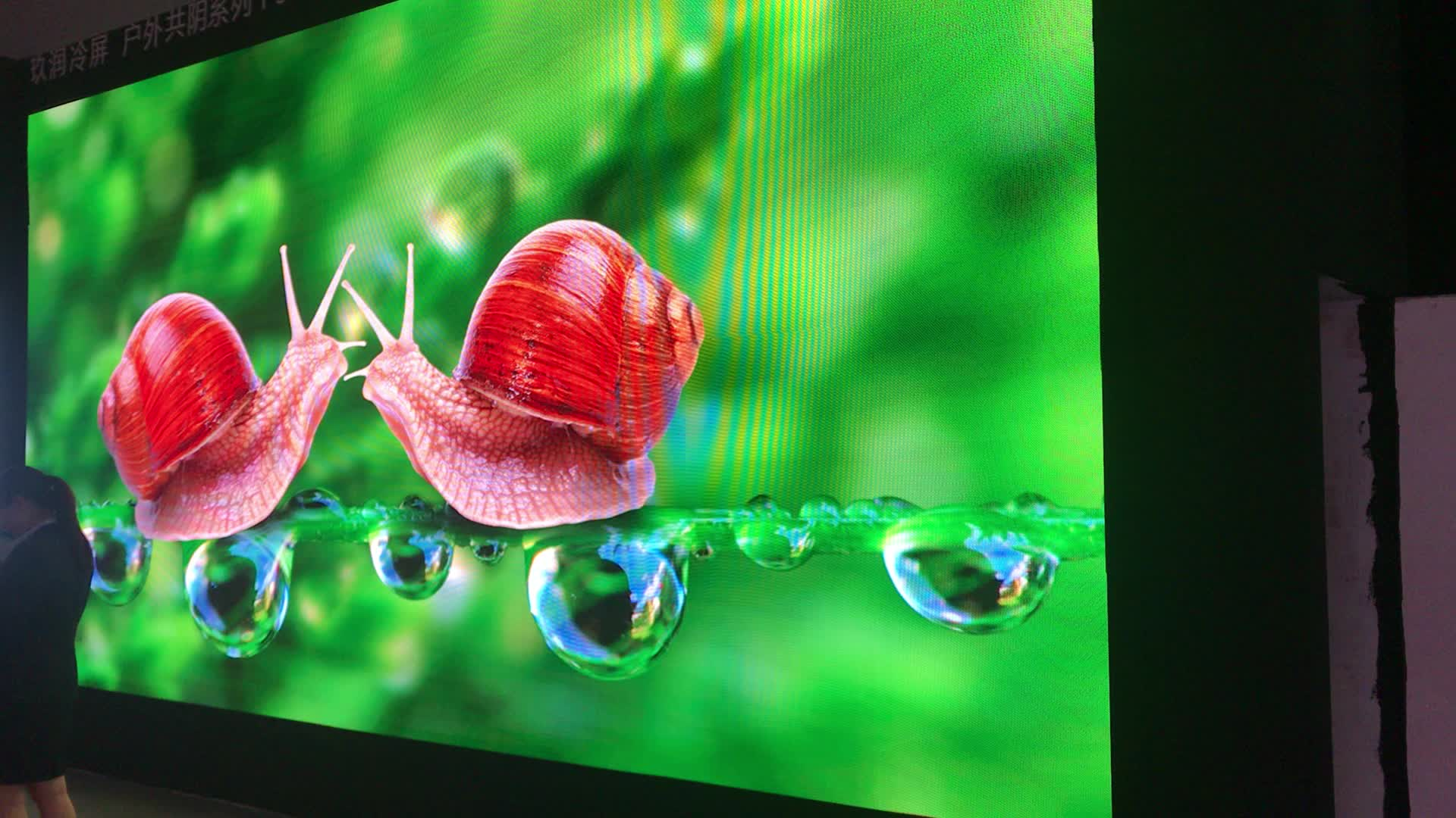 SMD1921 PH3mm HD Advertising High Refresh 3840Hz Stage Background Led Video Wall
