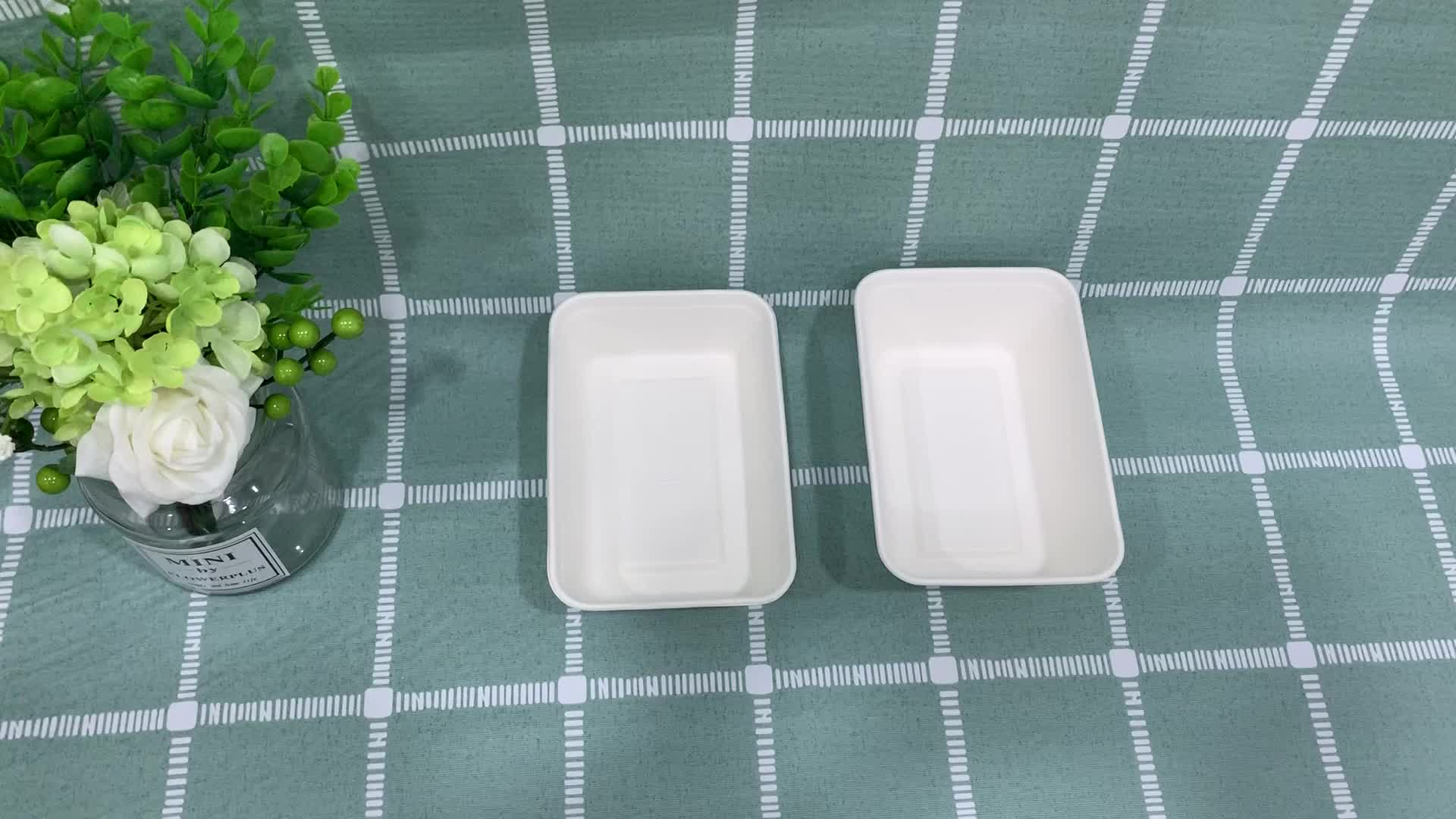 650ml compostable and biodegradable non- insulted take way tableware food container