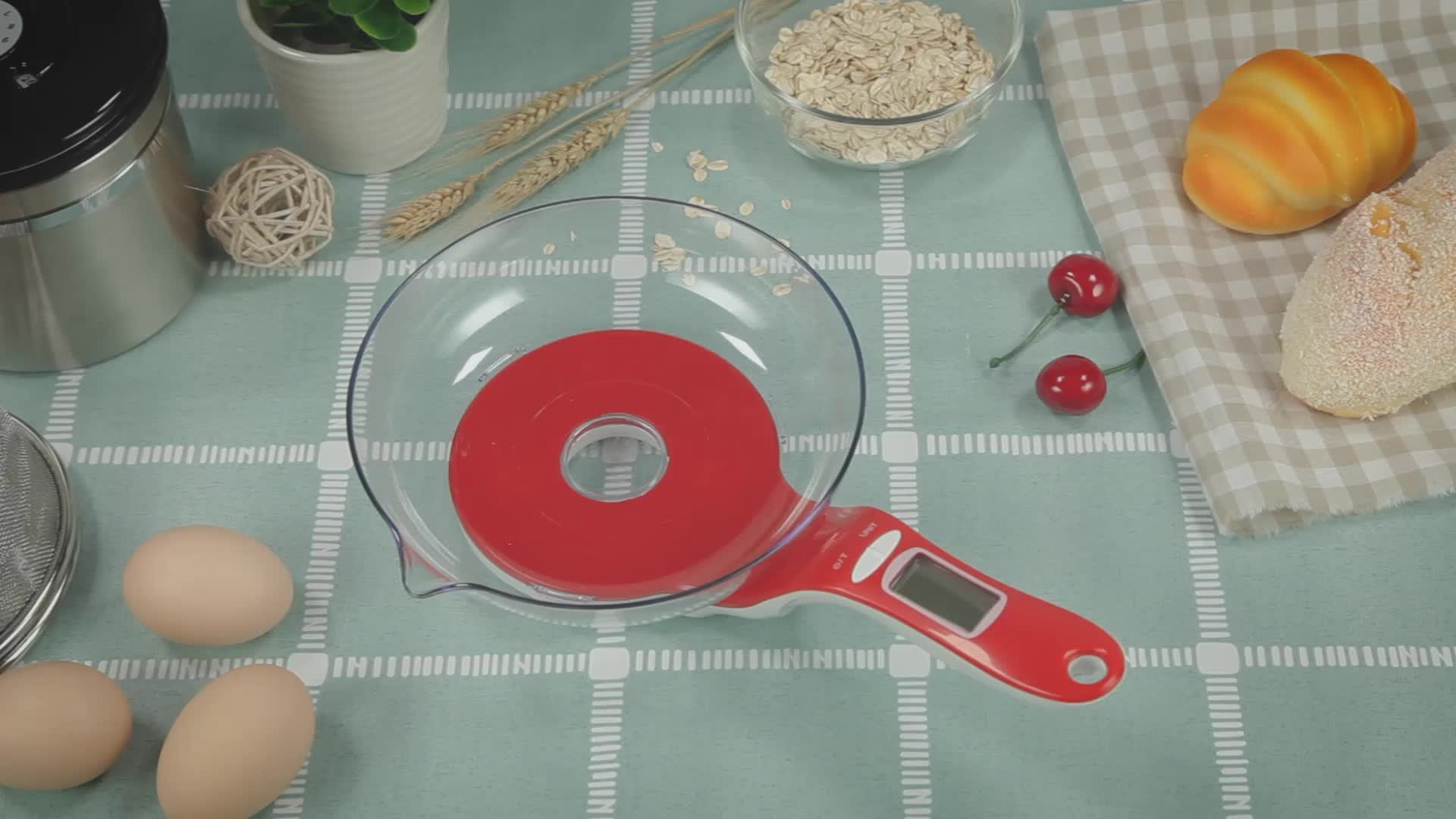 Taiza Manual household electronic weight smart food weighing digital kitchen scale