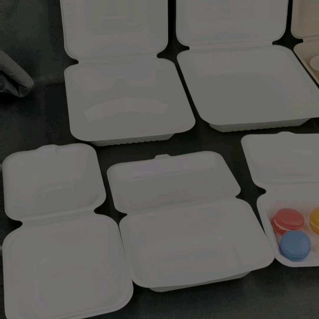 Sugarcane Biodegradable Tableware Take out clamshell Food Box