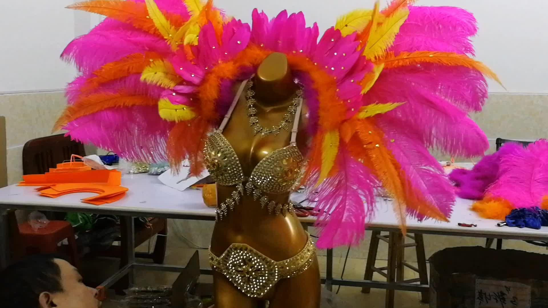 DIY Sexy Erotis Brazil Karibia Karnaval Tema Pesta Bulu Kostum untuk Wanita Dibuat Di Cina