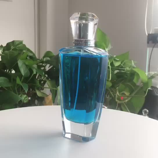 China Manufacturer Container Bottles Dropper Perfume Bottles