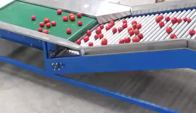 Automatic Fruit Vegetable Grading Machine for Size Sorting
