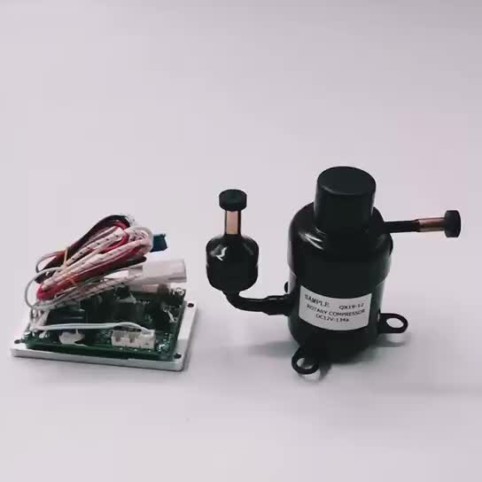 r134a dc 12v 24v rotary mini refrigerator compressor for Micro Refrigeration System