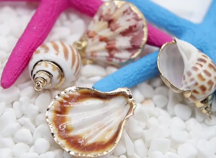 gold plated jump ring original sea shells natural conch crafts for accessories