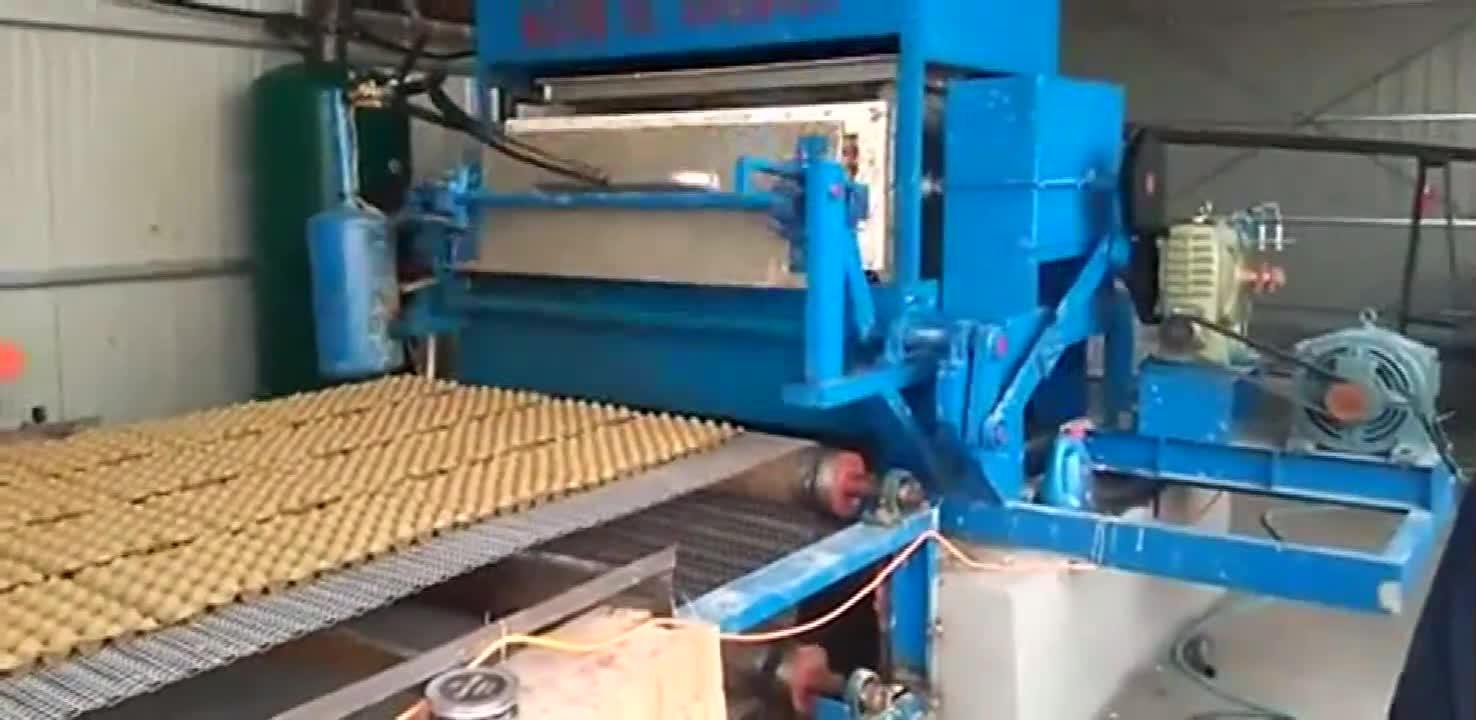 Düşük Fiyat Atık Kağıt Bardak Geri Dönüşüm Hamuru Oluşturan Yumurta tepsi yapma makinesi
