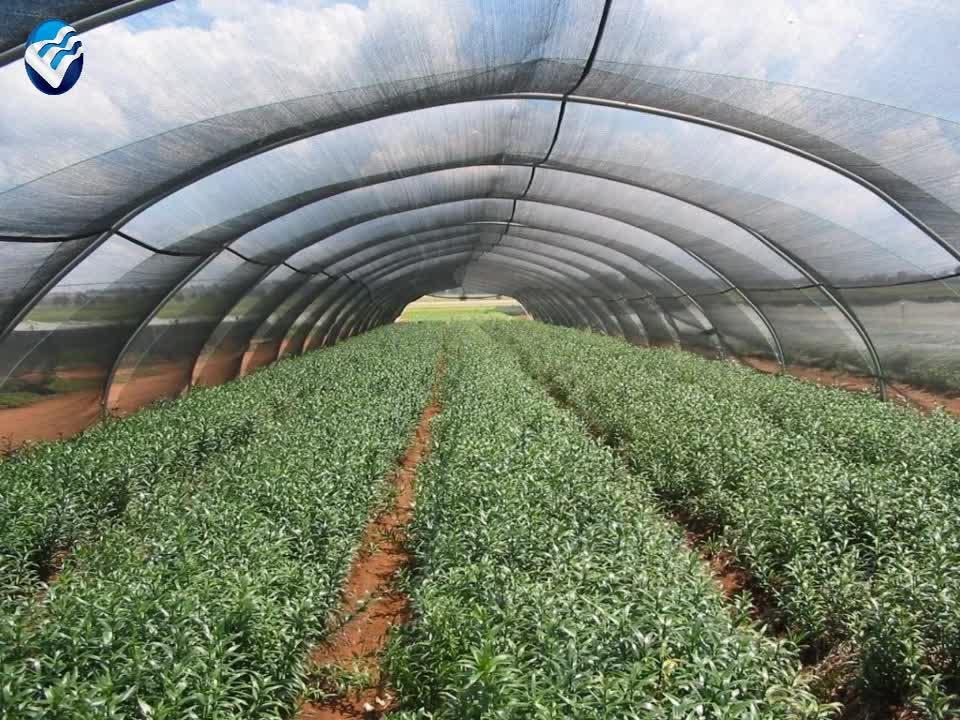 30-90% 그늘 그물 다른 라셀 니트 농업 그늘 천 온실