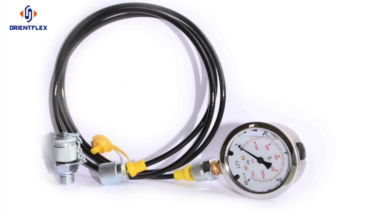 Manufacture pressure gauge micro hydraulic hose test testing assembly high pressure test point
