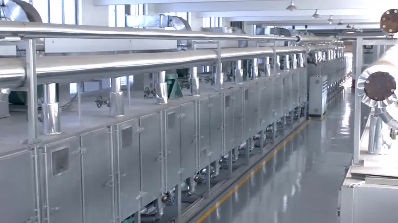 DW Model Continuous Conveyor Mesh Belt Dryer Machine