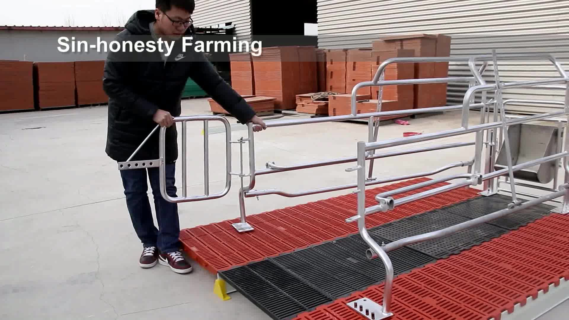 Designed Pig Cages Sow Crates For Pig Farming Equipment