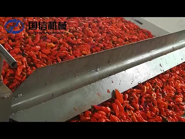 GUOXIN Best Quality Continuous Red Chilli Drying Machine From Chinese Manufacture