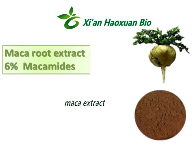 Maca Extract Powder Macamides, black maca extract powder , natural maca extract