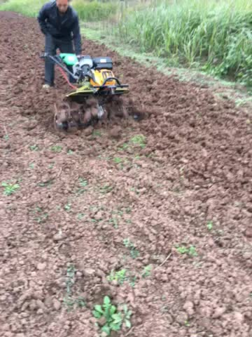 hot selling Engine Gear Driven mini power tiller for the farm