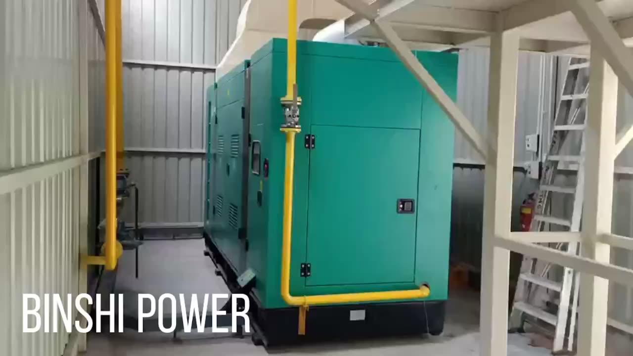 Cummings biyogaz doğal LPG gaz jeneratörü 500kw