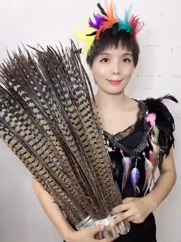 ZPDECOR  Wholesale Selected Quality 25-30 cm Dyed Red Cheap Ring neck Pheasant Tail Feathers for Sale and Carnival