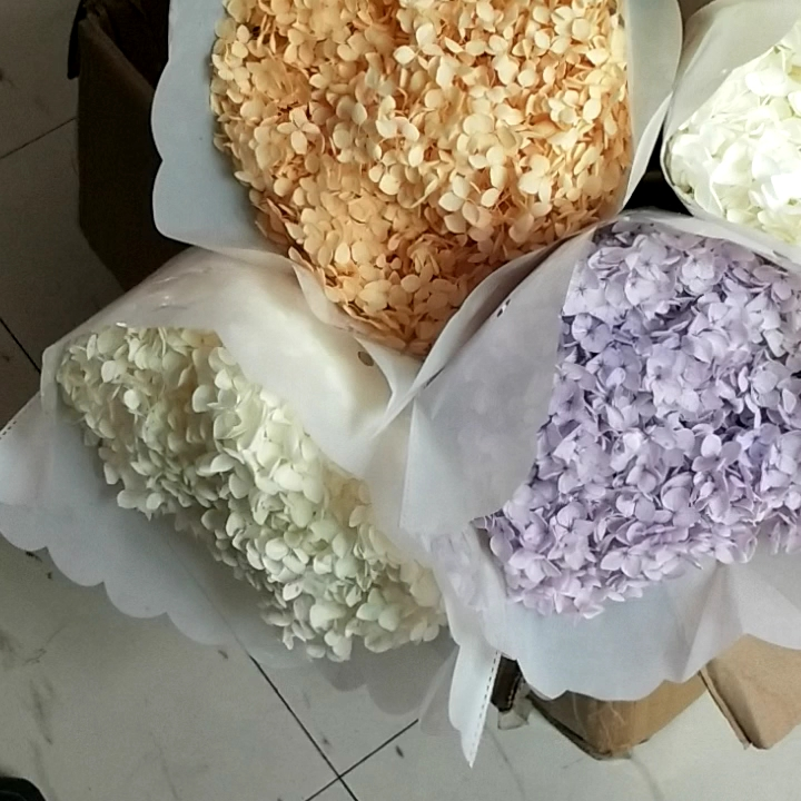 High Quality Big Single Stem Preserved Hydrangea Flowers Natural Hydrangeas for Home Wedding Decoration