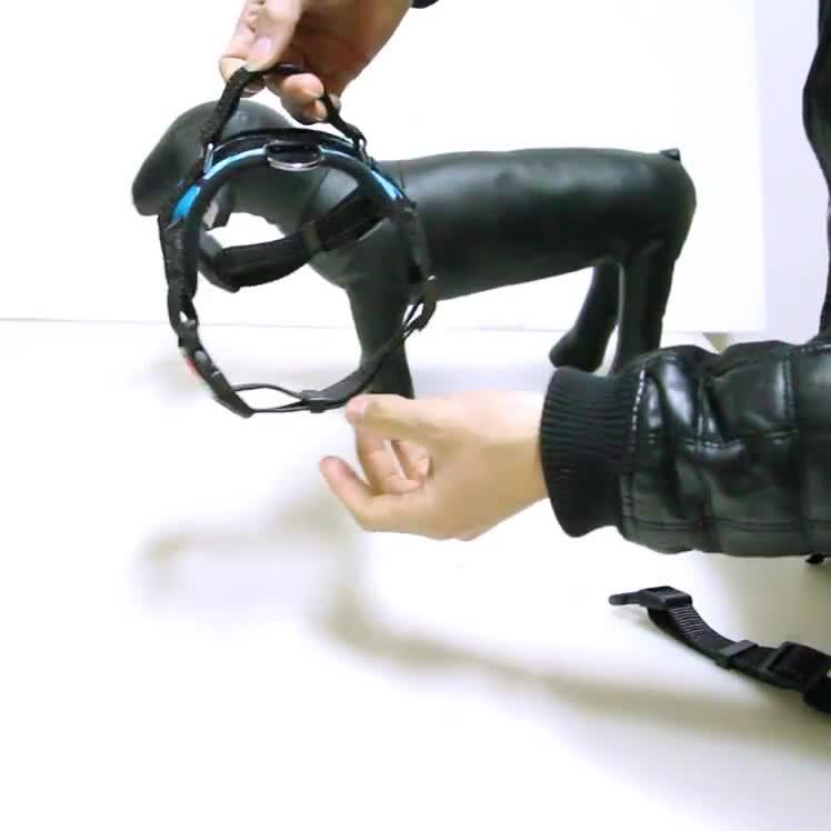 โลโก้ที่กำหนดเองสัตว์เลี้ยงสายรัดปรับสีสันไนล่อนสุนัข harness vest