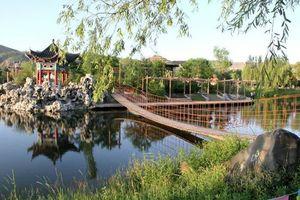 景熙丰湿地生态公园