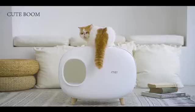 חתול המלטת תיבת hotsale הטוב ביותר סיטונאי זול מחיר באיכות גבוהה לסביבה ידידותי סגור אסלת חתול חתול ניקוי