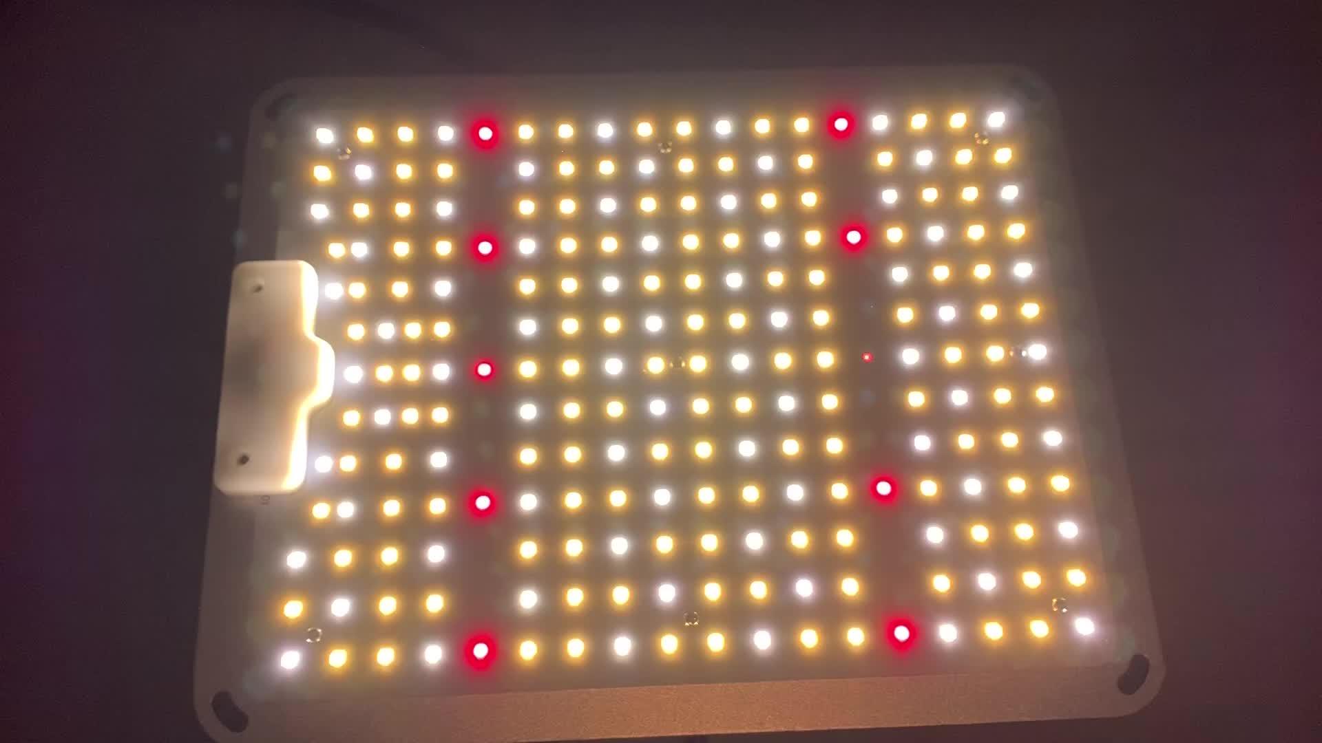 Samsung puces LM301B et gradable MeanWell pilote Sunlike spectre complet plantes lumières SF-1000 LED pousser la lumière