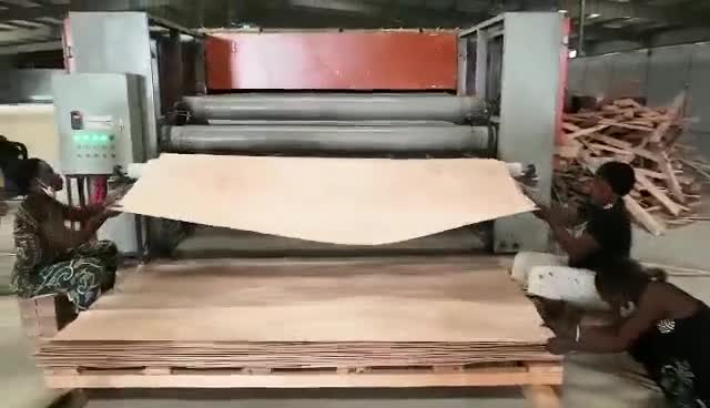 High capacity continuous plywood veneer mesh roller dryer/ drying machine