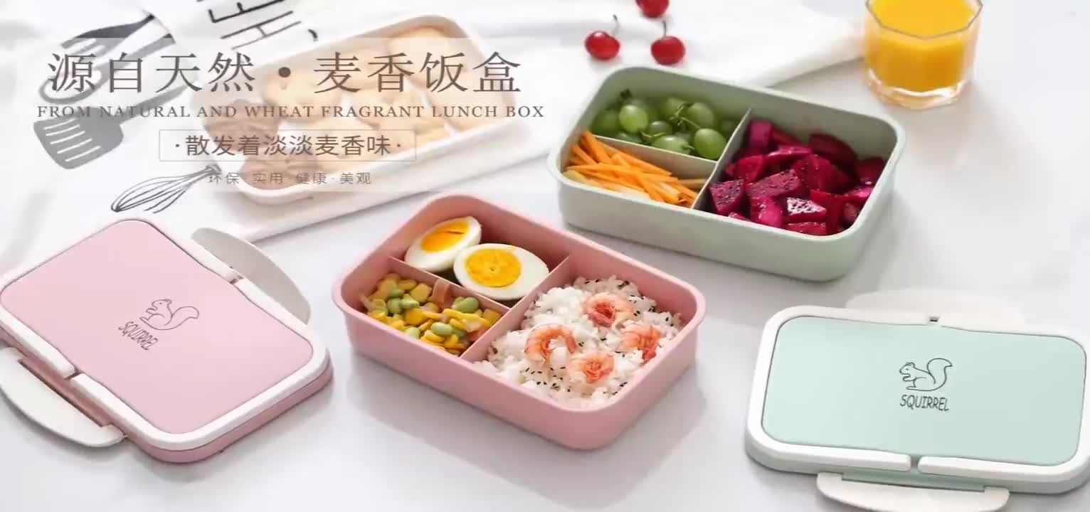 Eco-friendly BPA Free Double Layer Wheat Straw Biodegradable Bento Lunch Box