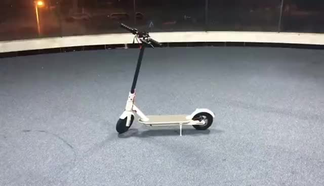 2 wheel folding electric scooter  5.5inch 24v 250w kickstand self-balance mini scooter for adults and kids