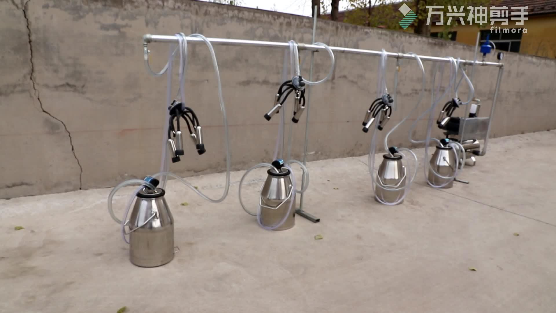 240CC दूध पंजा L80 Pulsator 4 बाल्टी तय प्रणाली पाइपलाइन दूध देने की मशीन
