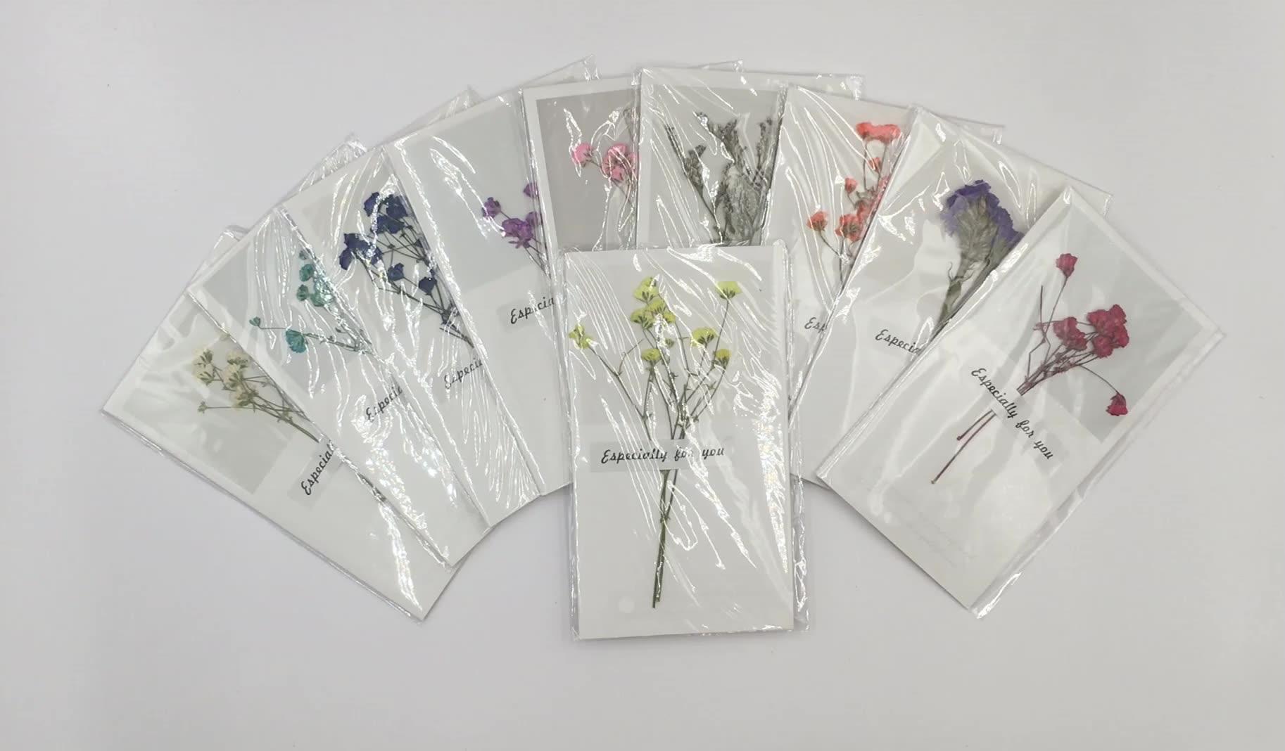 10Pcs Gypsophila Hoa Khô Viết Tay Phước Lành Thiệp Chúc Mừng Quà Tặng Sinh Nhật Thẻ Thẻ Lời Mời Đám Cưới Sử Dụng Lễ Kỷ Niệm Bên
