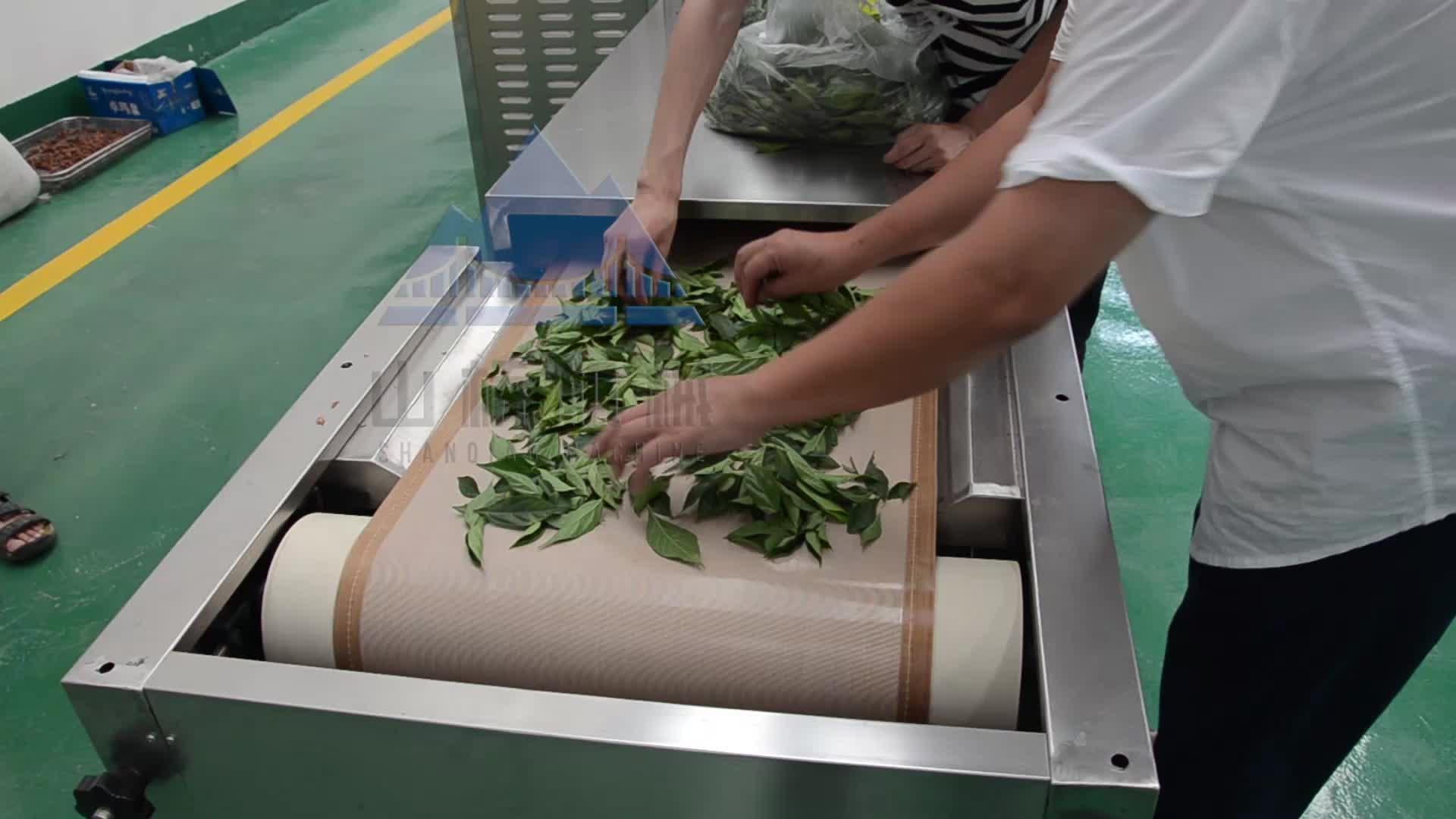 Endüstriyel konveyör bant tipi mikrodalga ot yaprak kurutma makinesi/mikrodalga çay kurutma makinesi