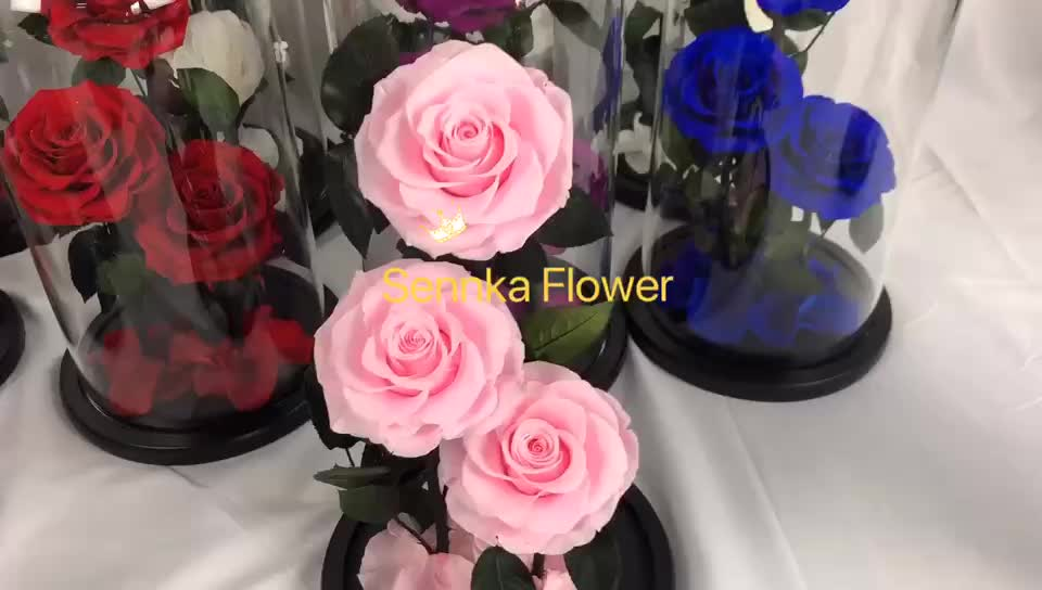 2019 new design long life christmas flower real preserved red roses in glass tube for sale