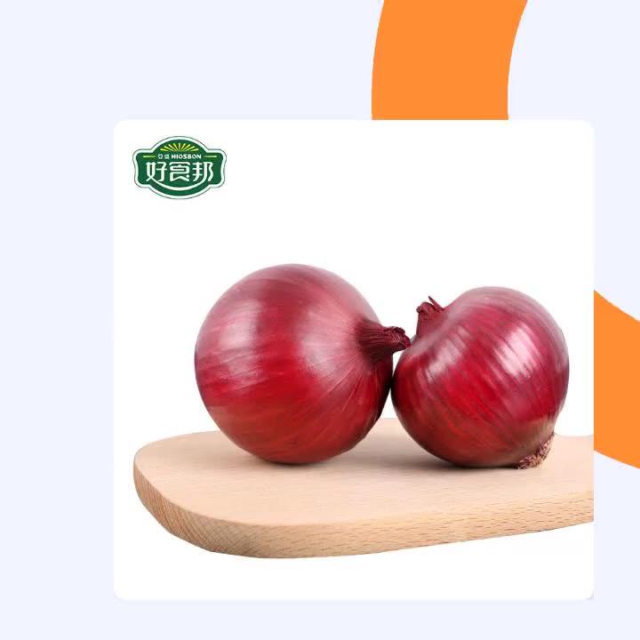 2019 Chinese Gansu Fresh Red Onion
