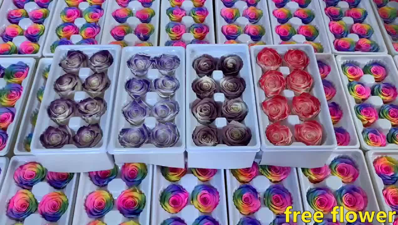Wholesale high quality 4-5cm mix color preserved roses flower
