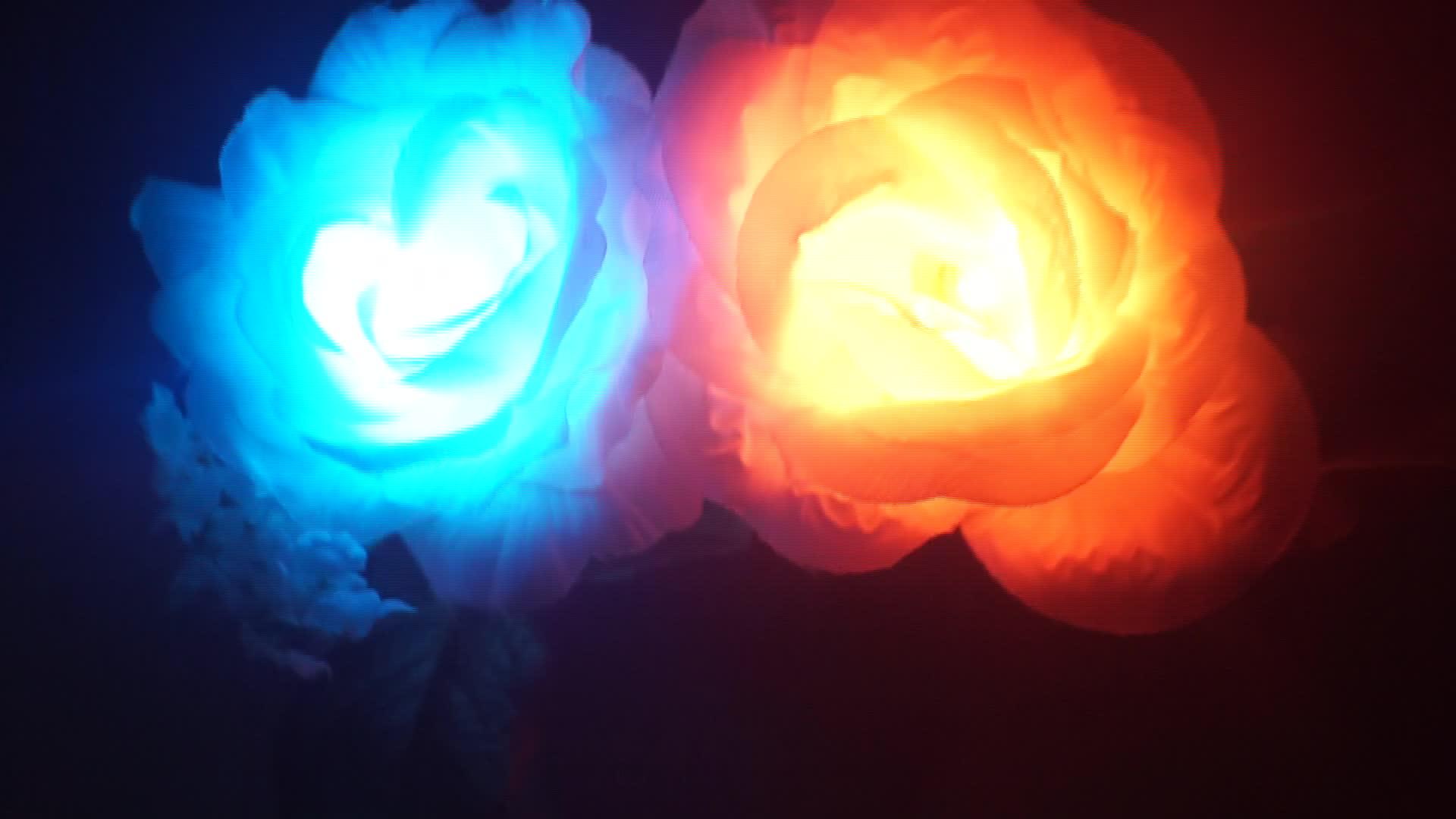 LED Fiore Garofano Rosa Rossa di Massa A Buon Mercato di Massa Regali Per Le Donne