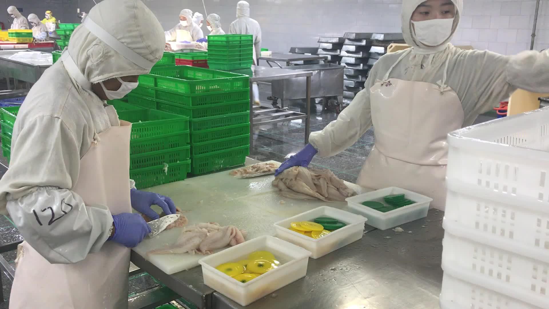 frozen cod/codfish/pollock