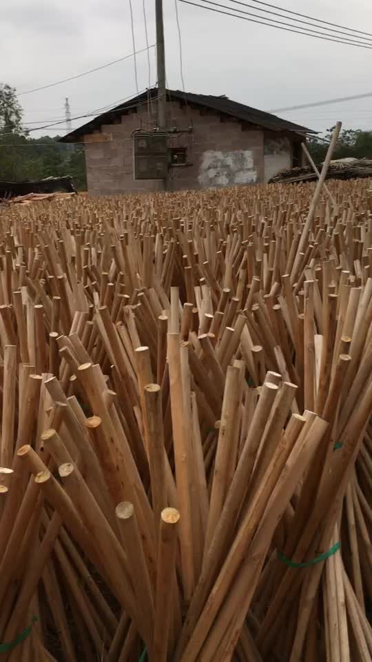 New products on china market pvc coated wooden broom handle