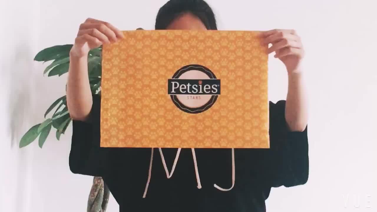 カスタムロゴ印刷されたパッケージング郵送無料自己粘着ビニール袋用服