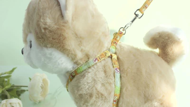 Acessórios Na China Coleira do animal de Estimação Trela Arnês do cão
