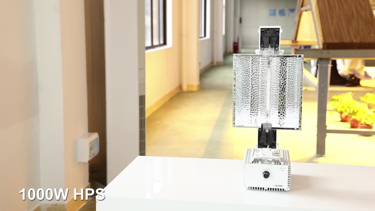 더블 엔드 램프 Luxx 1000W 키트 Lux 조명 Gavita Hps 식물 성장 빛