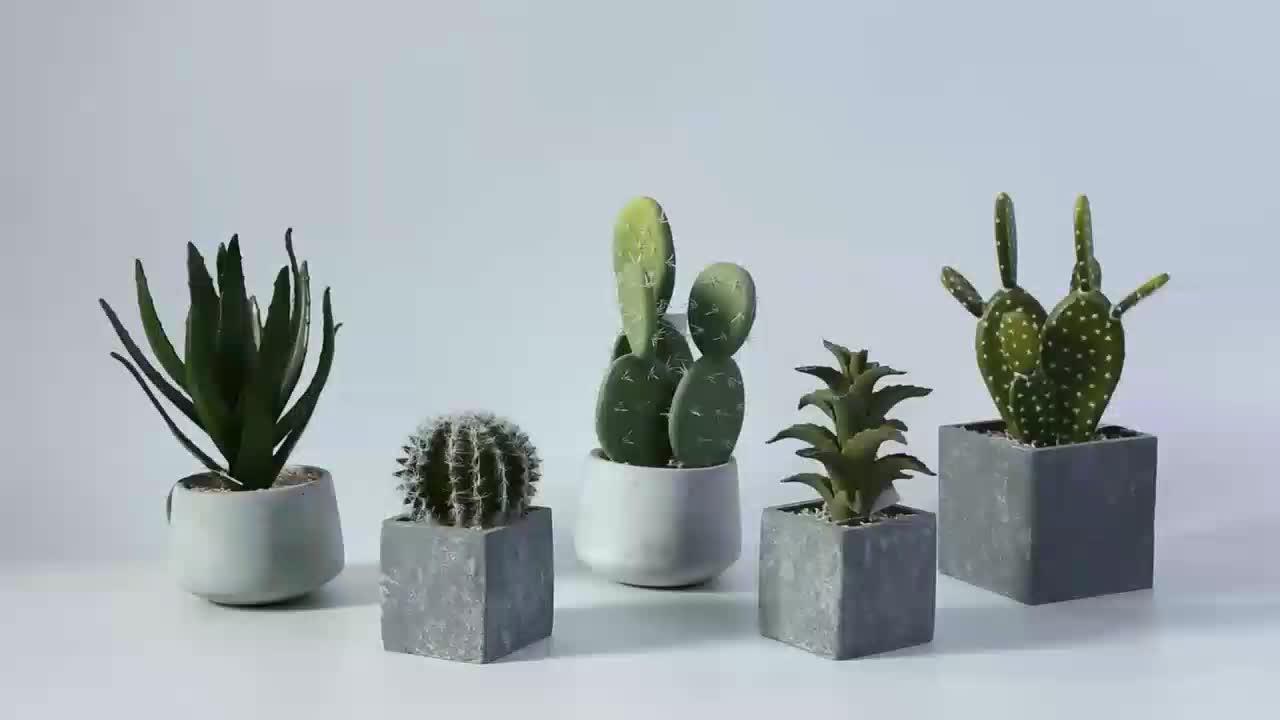 Mini Cactus Kunstmatige Succulent Planten Indoor Cactus Bonsai Cactus Plant voor Desking