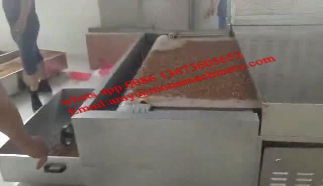 Industriële continue PTFE riem magnetron Tenebrio molitor droger dehydrator geel meelworm drogen machine prijs