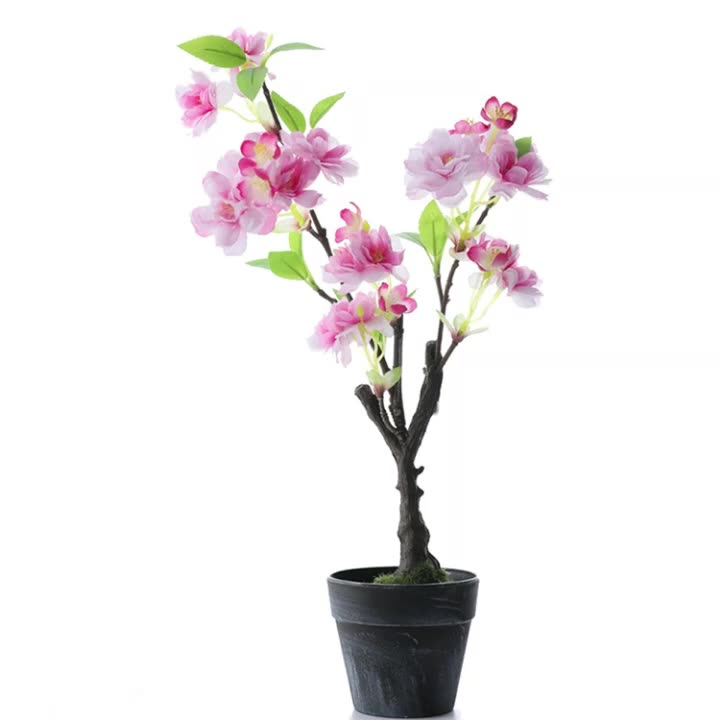 T214 Wholesale Potted Blossom Tree Flowers Mini Small Table Artifical Sakura Cherry Blossom Bonsai Tree For Wedding Decoration Buy Mini Cherry Blossom Tree Cherry Blsoom Tree Mini Plastic Cherry Blossoms Trees Product On