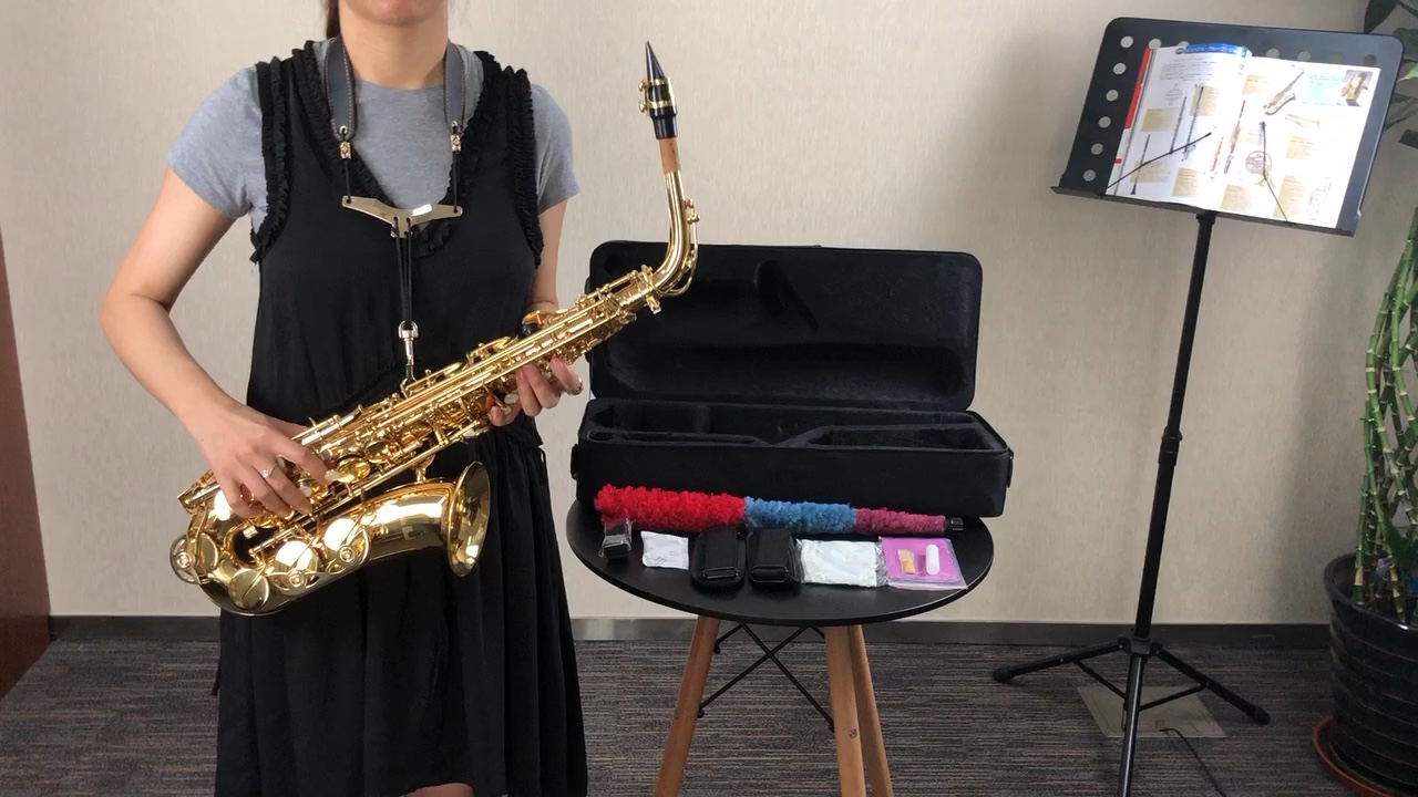 Focus FAS-100 Goede Kwaliteit Chinese E Platte Chinese Altsaxofoon Met Case