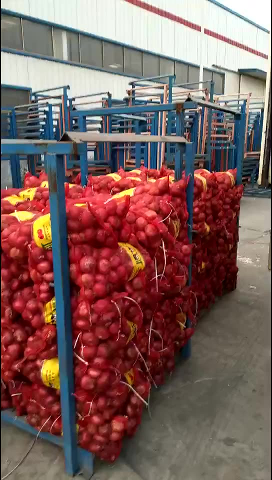 2020 fresh vegetables fresh red onions for sale lowest price