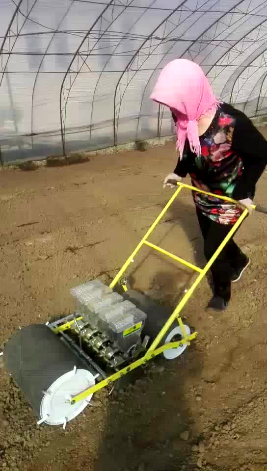 carrot planter /jang seeder vegetable seeder
