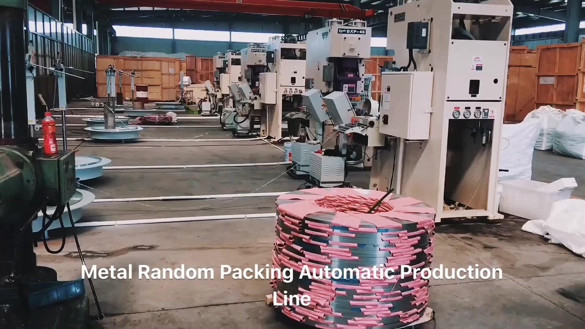 Metallo Imballaggio Casuale Anello Pall Anello Raschig IMTP CMR
