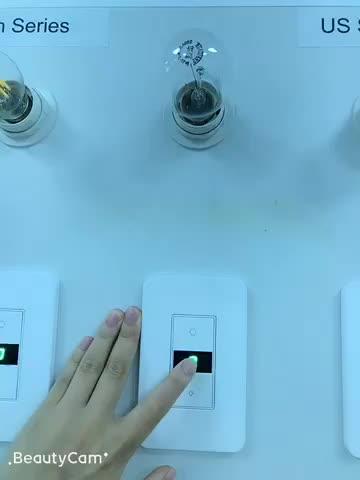 110V осветлить и затемнения Диммер переключатель Wi-Fi Смарт сенсорный диммер настенный выключатель с Alexa Echo