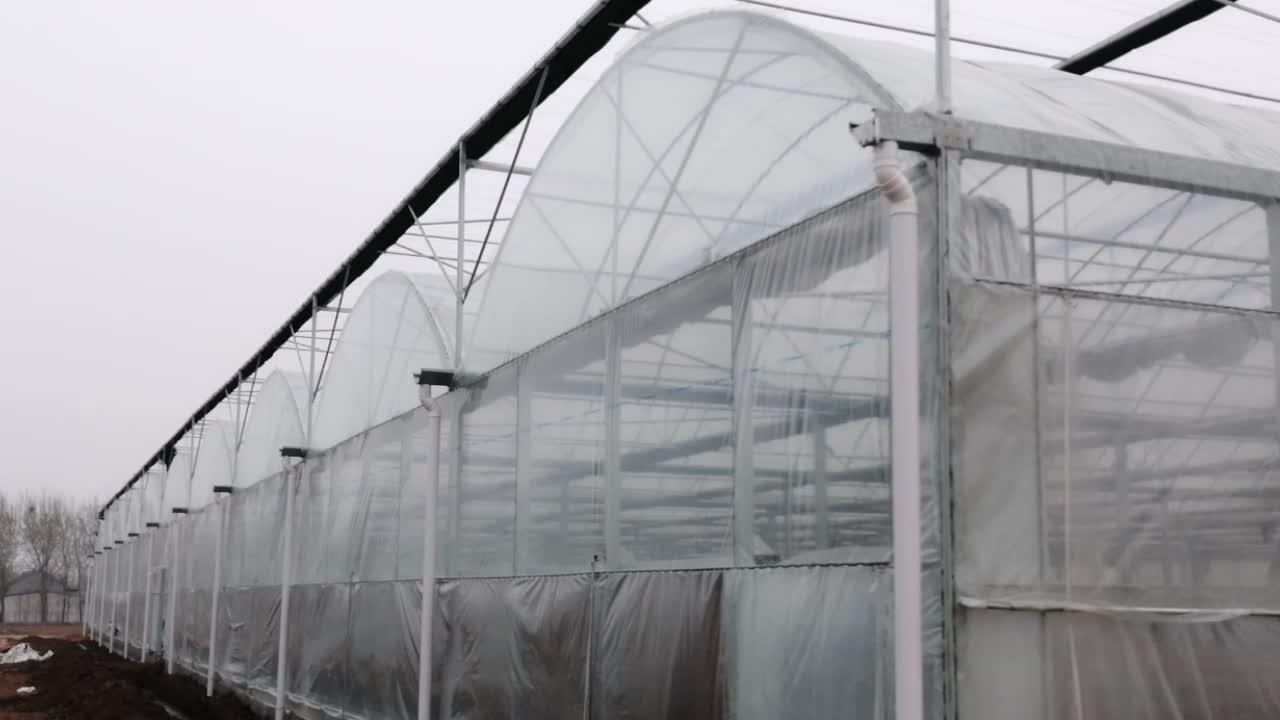 Multi spannweite co2 generator gewächshaus mit klima control system