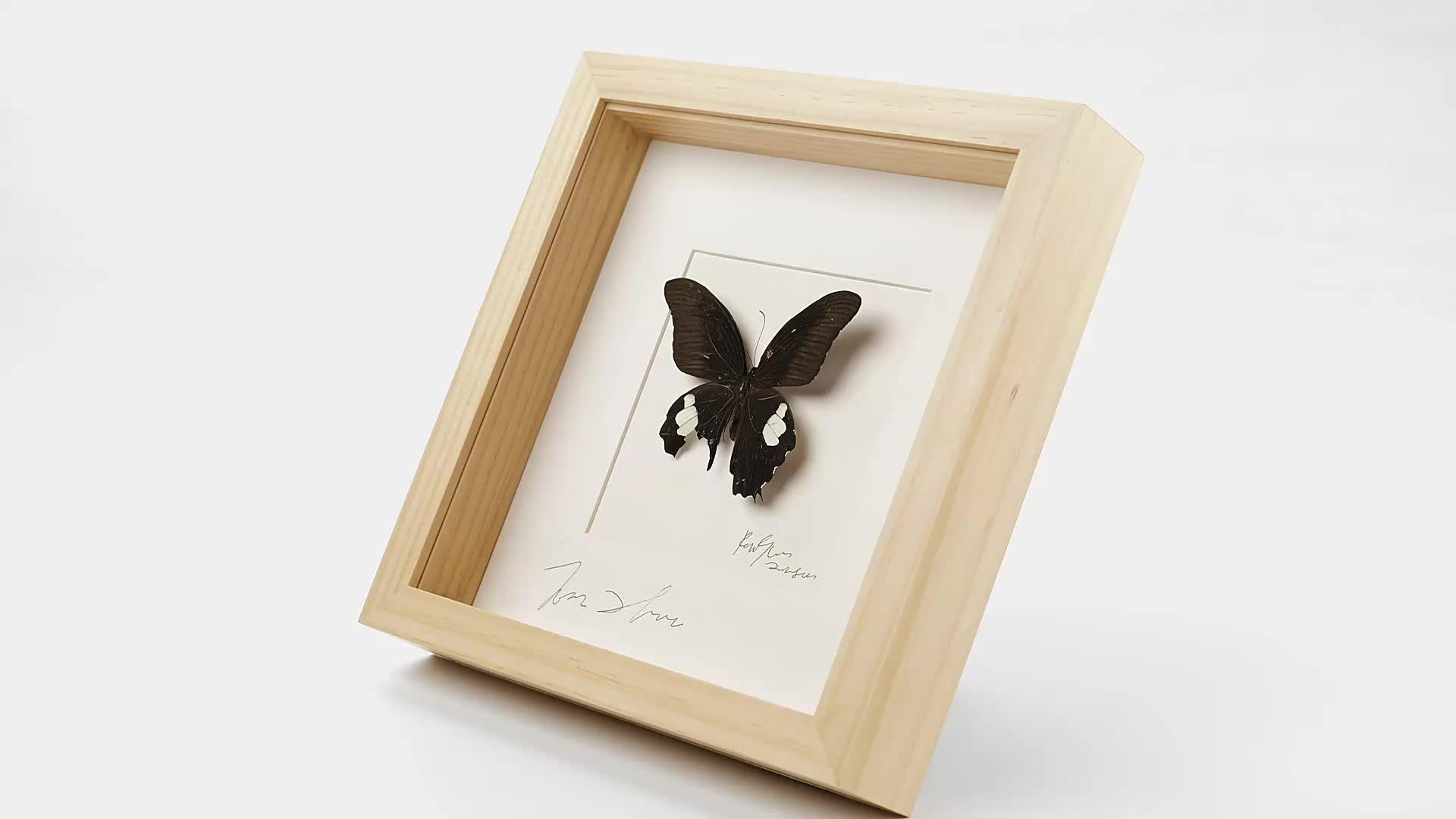 Hochwertige australien 8*8 weiß wand kunst 3D tiefen quadratischen DIY großhandel holz shadow box foto rahmen