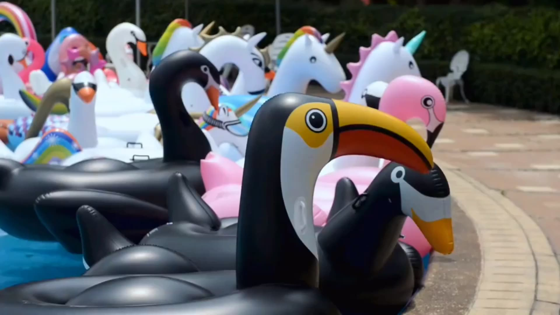 2018 New inflatable white swan toy, large inflatable water toys pool floating board
